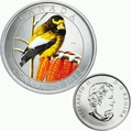 Канада 25 центов 2012. Вечерний американский дубонос