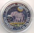 Слоны. Сомали 100 шиллингов 2011.