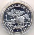 Слоны. Сомали 100 шиллингов 2012.