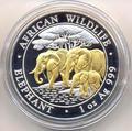 Слоны. Сомали 100 шиллингов 2013. (позолота)