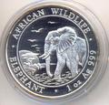 Слон. Сомали 100 шиллингов 2010.