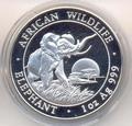 Слон. Сомали 100 шиллингов 2009.