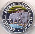 Слоны. Сомали 100 шиллингов 2013.