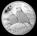 Канада 20 долларов 2013. Белоголовые орланы