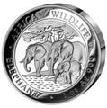 Сомали 100 шиллингов 2013.«Слоны» из серии «Дикая Африка»(High Relief).Арт.000262545053