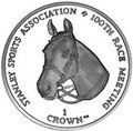 Фолклендские острова 1 крона 2012.Лошадь - 100 лет Спортивной ассоциации Стэнли.Арт.000026043609/60