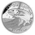 Канада 20 долларов 2015.Североамериканская спортивная рыбалка - Радужная форель.