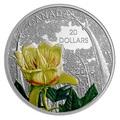 Канада 20 долларов 2015 Цветок Тюльпанное Дерево Лес Канады (Canada 20C$ 2015 Carolinian Tulip-Tree Flower).Арт.000445450355/67