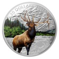 Канада 20 долларов 2015.Величественный Лось серия Величественные Животные.Арт.000445150837/60