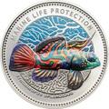 Палау 1 доллар 2013.Рыба Мандаринка (Synchiropus splendidus) – Защита морской жизни.Арт.000065945210/60