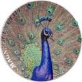 Острова Кука 5 долларов 2015 Павлин Великолепная жизнь (Cook Isl 5$ 2015 Magnificent Life Peacock 1Oz 999 Silver).Арт.60