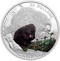 Канада 20 долларов 2016.Маленький дикобраз – Детеныши животных.Арт.60