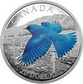 Канада 20 долларов 2016.Голубая горная Сиалия (Sialia currucoides) серия Перелетные птицы.Арт.60