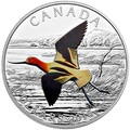 Канада 20 долларов 2016.Птица Американская Шилоклювка.Арт.60