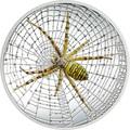 Острова Кука 5 долларов 2016 Паук-оса Великолепная жизнь (Cook Isl 5$ 2016 Magnificent Life Wasp Spider 1Oz 999 Silver).Арт.My/60