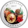 Канада 20 долларов 2017 Морская звезда серия Под водой.Арт.60