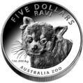 Австралия 5 долларов 2018 Красная Панда - Зоопарк (Australia 5$ 2018 Zoo Series Ravi Red Panda).Арт.60