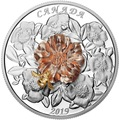 Канада 50 долларов 2019 Шмель Цветок Роза (Canada 50$ 2019 Bumble Bee and the Bloom Silver Coin 5oz).Арт.69