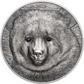 Монголия 500 Тугриков 2019 Гобийский Бурый Медведь Охрана Дикой Природы (Mongolia 500T 2019 Mongolian Gobi Bear Wildlife Protection 1oz Silver Coin).Арт.67