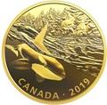 Канада 30 долларов 2019 Касатка и Морские Львы Хищник и Добыча (Canada 30$ 2019 Predator and Prey Orca and Sea Lions 2 oz Gold Plated Silver Coin).Арт.65