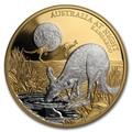 Ниуэ 100 долларов 2019 Ночная Австралия Кенгуру (Niue 100$ 2019 Australia at Night Kangaroo 1oz Gold Proof Coin).Арт.65