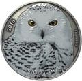 Буркина Фасо 1000 франков 2016.Сова - Snowy owl (Эффект реальных глаз).Арт.60